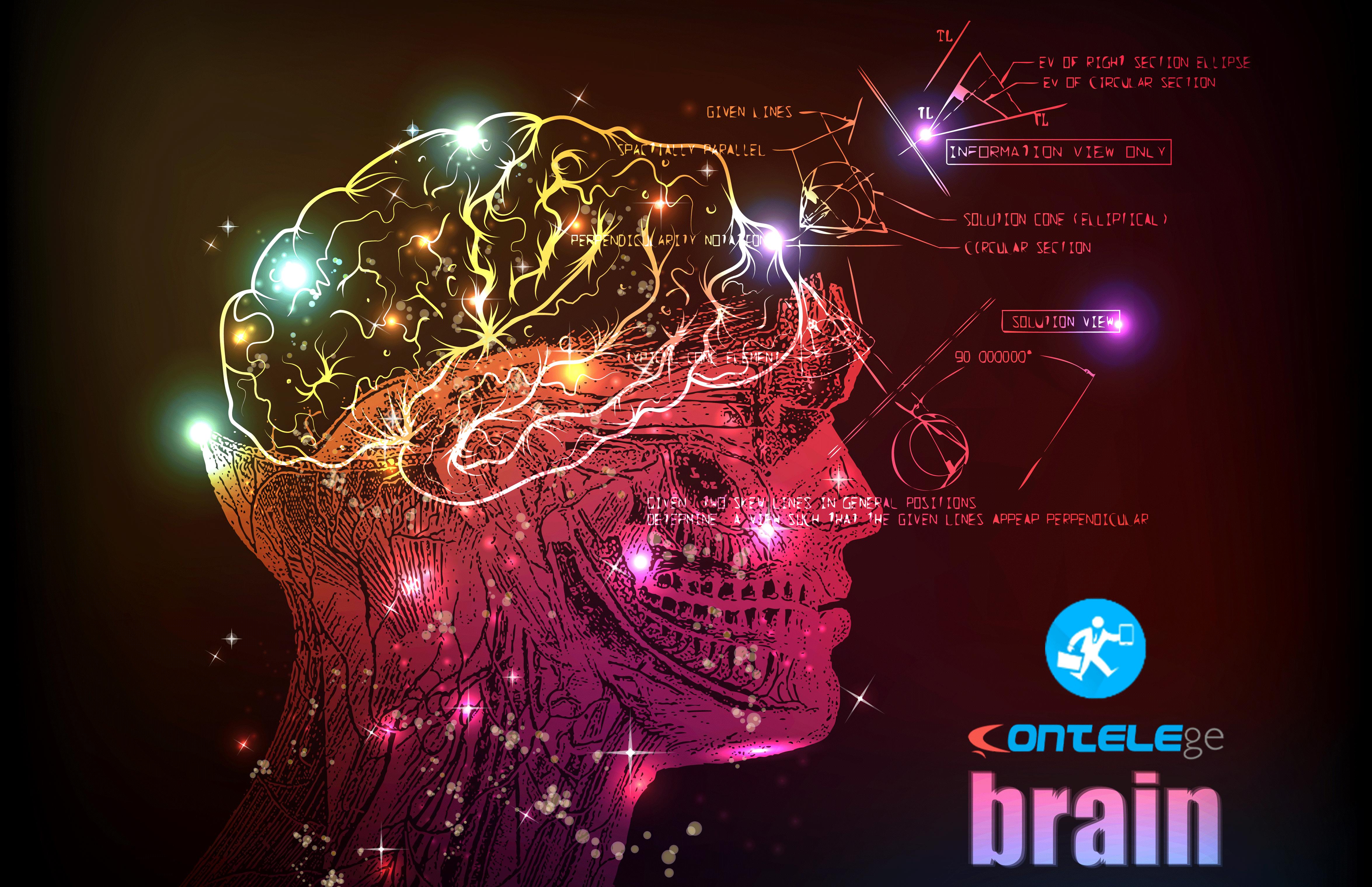 Contele GE 2.1.3 - Versão Brain